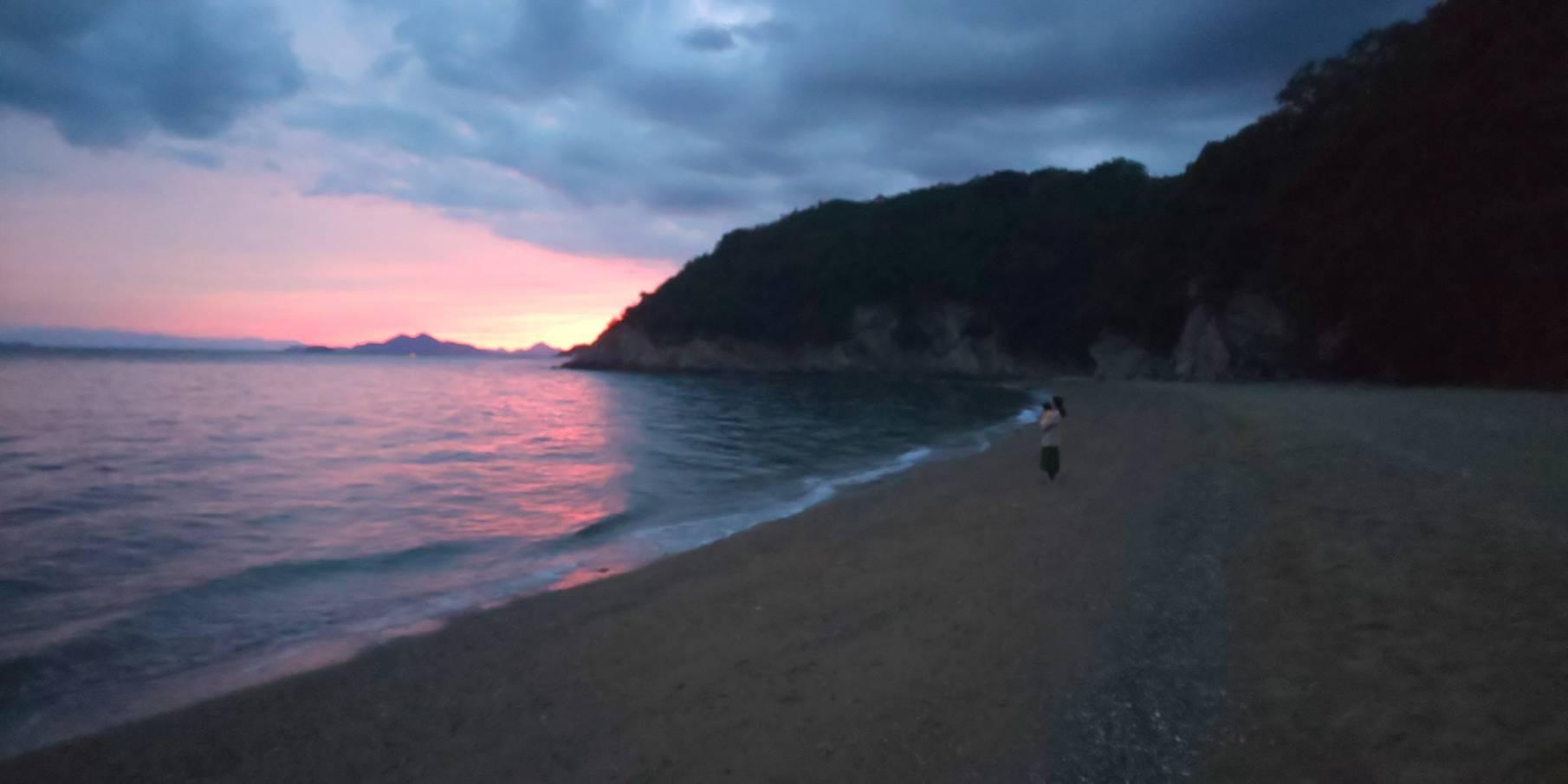 「私は海をだきしめていたい 坂口 安吾(著)」の写真